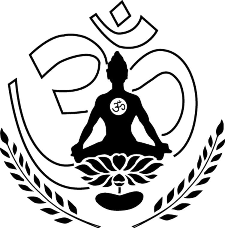 YOGA VIDYA GURUKUL logo